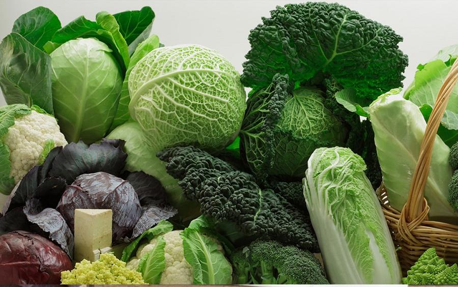 Rau xanh là nguồn chất xơ cần thiết cho cơ thể