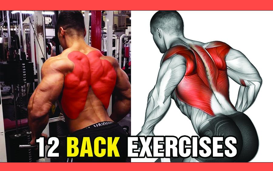 Các bài tập gym này có vai trò giảm bớt mỡ cho lưng