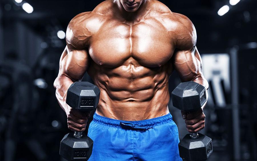 Nam giới tập gym với mục đích tăng cơ