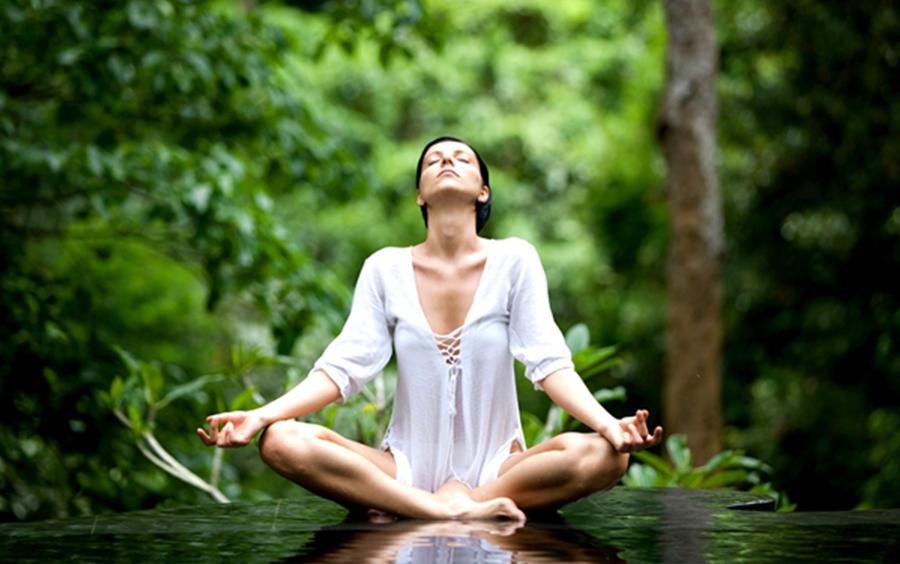 Yoga cùng với thiên nhiên trong rừng