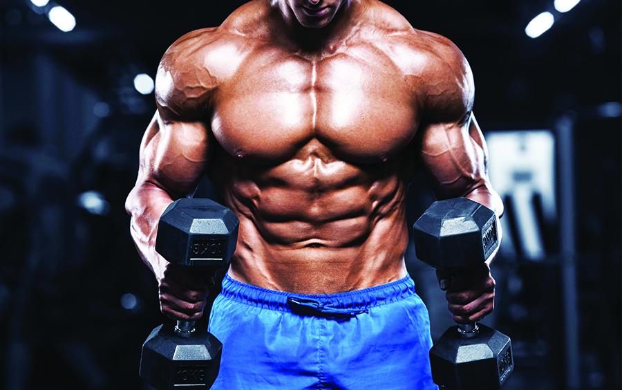Tập thể dục giúp thúc đẩy quá trình phục hồi và tăng trưởng cơ bắp