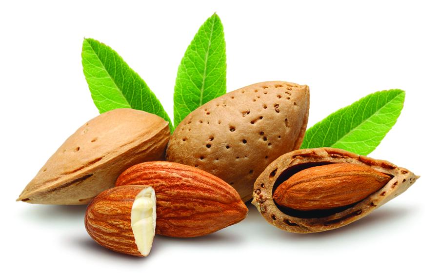 Hạnh nhân rất giàu vitamin E tự nhiên